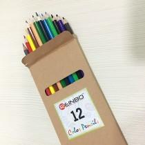 Color Pencils 12pcs