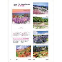 803 - Full Blossom Season 大地花春